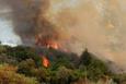 Antalya Kumluca alev alev yanıyor