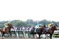 Elazığ TJK at yarışı 29 Haziran 2016 altılı ganyan bülteni