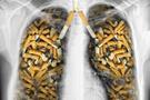 '21. yüzyılda bir milyar kişi sigara yüzünden ölecek'