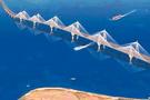Çanakkale Köprüsü ve otoyolu nereden geçecek işte güzergah haritası