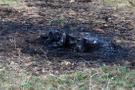 Vahşet: Tüfekle vurduktan sonra diri diri yaktılar!