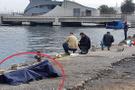 Cesede umursamadan balık tutmaya devam ettiler!