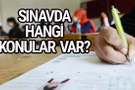 Yeni liseye geçiş sınavında kaç soru var hangi konular var?