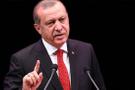 Erdoğan'dan CHP'li vekile 100 bin liralık tazminat davası