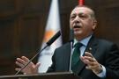 Erdoğan ilk kez açıkladı DEAŞ miltanlarının yeni adresi