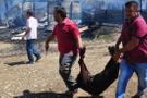 Antalya'da facia 351 küçükbaş hayvan telef oldu