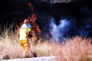 Bodrum alev alev: Yerleşim yerleri tehlikede!
