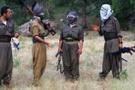 PKK'ya büyük şok! Necmettin Öğretmen'i kaçıran...