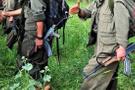 Diyarbakır'da öldürülen PKK'lı bakın kim çıktı!