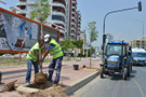 Mersin'de reklam panosu için ağaçları kim kesti?