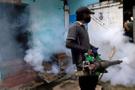 Sri Lanka'da humma salgınının bilançosu her geçen gün artıyor