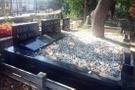 Şaşmaz'ın katili Aker mezar taşı yaptırmış