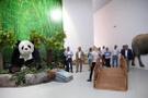 İzmir'de çocuklar böcekleri müzelerden sevecek