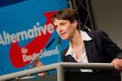 Almanya'da seçimlerin ardından şok istifa.. O lider bıraktı...