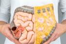 GAPS diyeti nedir GAPS diyeti nasıl yapılır bağırsak sendromu
