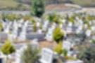 Diyarbakır'da mezarlıkta kanlı poşeti açanlar dehşete düştü