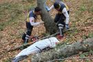 Kestiği ağacın dalı başına saplanınca feci şekilde can verdi!