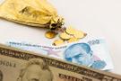 Petrol toplantısı sonrası dolar ve altında son durum