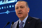 Cumhurbaşkanı Erdoğan Trump'la ne konuştuğunu açıkladı