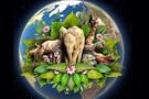 Dünya Günü nedir 22 Nisan önemi bugün ne oldu?