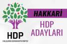 HDP Hakkari milletvekili adayları 27. dönem listesi