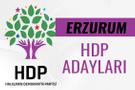 HDP Erzurum milletvekili adayları 27. dönem listesi
