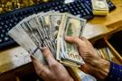Dolarla özel sektörün borcu 1 hatafda 112 milyor arttı