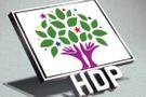 HDP Almanya'da adeta rezil oldu