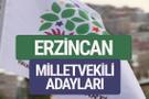 HDP Erzincan milletvekili adayları 2018 YSK isim listesi