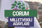HDP Çorum milletvekili adayları 2018 YSK isim listesi