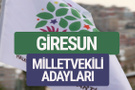 HDP Giresun milletvekili adayları 2018 YSK isim listesi