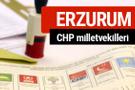 CHP Erzurum Milletvekilleri 2018 - 27. dönem Erzurum listesi