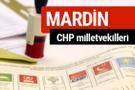 CHP Mardin Milletvekilleri 2018 - 27. dönem Mardin listesi