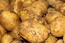 Suriye'den ithal edilen patates için Zeybekçi'ye sert tepki
