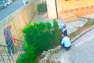 Camideki 31 ağacı 12 dakikada kesmişlerdi..ifadeleri şoke etti