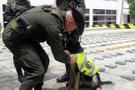 Suç örgütü polis köpeğini öldürene 70 bin dolar vadetti