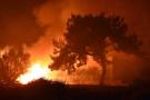 Bodrum'da yürekleri ağza getiren yangın