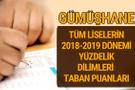 Gümüşhane Lise taban puanları 2018 -2019 nitelikli okullar LGS yüzdelik dilimleri