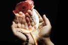Hz Muhammed'in arefe günü duası peygamber arefe günü ne yapardı?