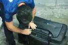 Sınır kapısında valizden çıkan polisleri şok etti!