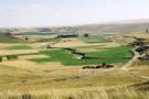 Hazine arazileri çiftçiye kiralanacak ecrimisil ne kadar işte başvuru şartları