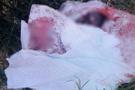 İstanbul'da korkunç olay: Çöpten bebek cesedi çıktı!