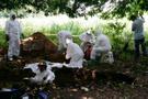 O ülkede inanılmaz olay: Toplu mezardan 166 kafatası çıktı!