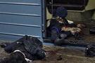Rusya'da yine bombalar patlıyor
