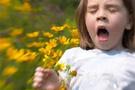 Alerjide tüm suçlu polenler değil!
