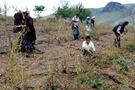 Kırıkkale'yi dolu vurdu hasar yüzde 100