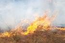 Kadıköy yangınla boğuştu