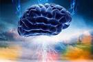 Deriden beyin hücresi üretildi