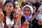 Kürt sorununda acı gerçekleri yazdılar