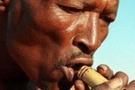 'Modern insanların kökeni güney Afrika'